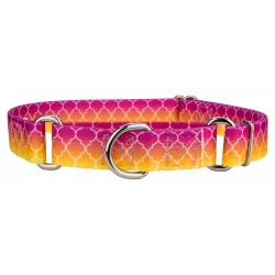 Fabulous Ombre Martingale Dog Collar