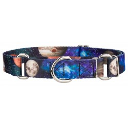 Galactic Neighbors Martingale Dog Collar