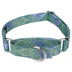 Green Paisley Martingale Dog Collar