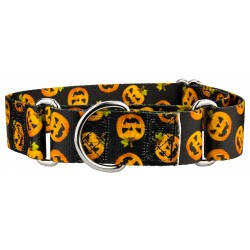 1 1/2 Inch Happy Jack Martingale Dog Collar