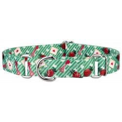 Love Letters Martingale Dog Collar