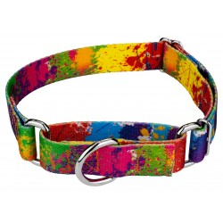 Paint Splatter Martingale Dog Collar
