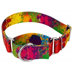 1 1/2 Inch Paint Splatter Martingale Dog Collar