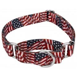 Patriotic Tribute Martingale Dog Collar