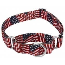 1 1/2 Inch Patriotic Tribute Martingale Dog Collar