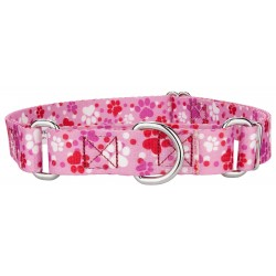 Puppy Love Martingale Dog Collar