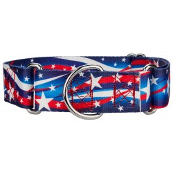 1 1/2 Inch Star Spangled Martingale Dog Collar
