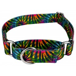Tie Dye Stripes Martingale Dog Collar