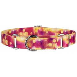 Unfocused Affection Martingale Dog Collar