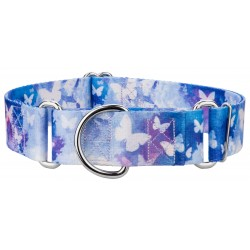 1 1/2 Inch Watercolor Butterflies Martingale Dog Collar