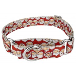 Where's Merry Martingale Dog Collar