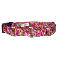 Pink Paisley Martingale with Deluxe Buckle