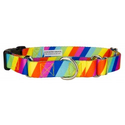 Rainbow Stripes Martingale with Deluxe Buckle
