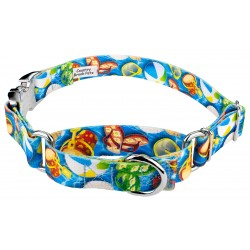 Pool Party Martingale with Premium Buckle Dog Collar
