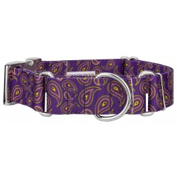 1 1/2 Inch Purple Paisley Martingale With Premium Buckle