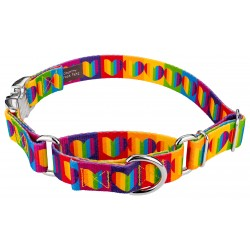 Rainbow Hearts Martingale with Premium Buckle Dog Collar