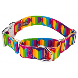 1 1/2 Inch Rainbow Hearts Martingale with Premium Buckle Dog Collar
