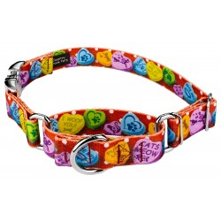 Red Valentine's Candy Martingale with Premium Buckle Dog Collar