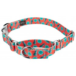 Tropical Tango Martingale With Premium Buckle