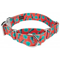 1 1/2 Inch Tropical Tango Martingale With Premium Buckle
