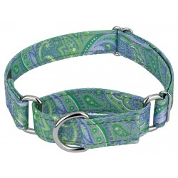 Green Paisley Reflective Martingale Dog Collar