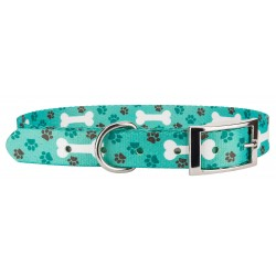 Oh My Dog Traditional Dog Collar