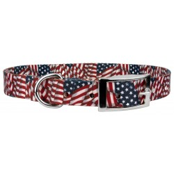 Patriotic Tribute Traditional Dog Collar