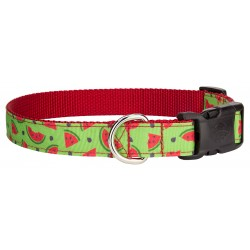 Deluxe Crisp Watermelon Ribbon Collar