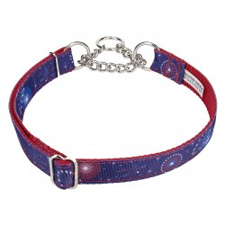 Bursting in Air Ribbon Half Check Collar
