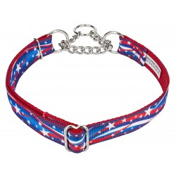 Star Spangled Ribbon Half Check Collar