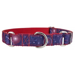 Bursting in Air Ribbon Martingale Collar
