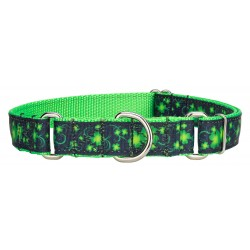 Clovers in the Wind Ribbon Martingale Dog Collar