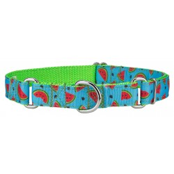 Cool Watermelon Ribbon Martingale Collar