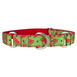 Crisp Watermelon Ribbon Martingale Collar