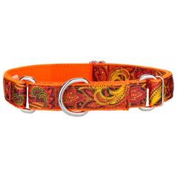 Fire Paisley Ribbon on Neon Orange Martingale Dog Collar