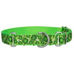 Shamrockin' Ribbon Martingale Dog Collar