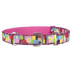 Spring Daisies Ribbon on Rose Martingale Collar
