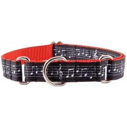Sheet Music Ribbon on Red Martingale Dog Collar