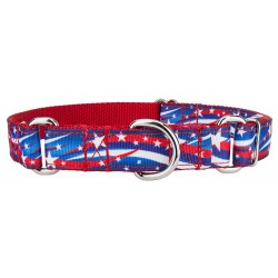 Star Spangled Ribbon Martingale Collar
