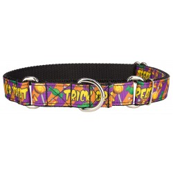 Sweet Treats Ribbon Martingale Collar Limited Edition