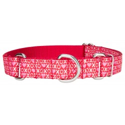 XOXO Ribbon Martingale Dog Collar