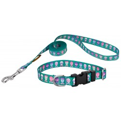 Country Brook Petz® Dapper Skulls Deluxe Featherweight Dog Collar & Leash  - Extra Small