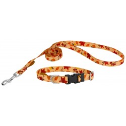 1/2 Inch Deluxe Fall Foliage Featherweight Dog Collar & Leash - Extra Small