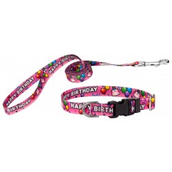 Pink Happy Birthday Deluxe Featherweight Dog Collar & Leash - Extra Small