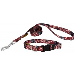 Patriotic Tribute Deluxe Featherweight Dog Collar & Leash - Mini