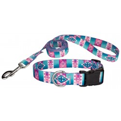 Albuquerque Deluxe Dog Collar & Leash