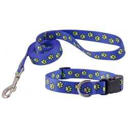 Blue Busy Paws Deluxe Collar & Leash