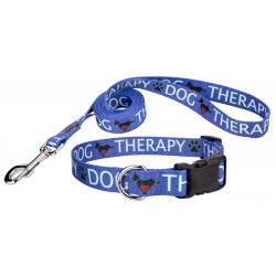 Blue Therapy Deluxe Dog Collar & Leash
