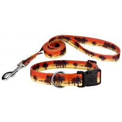 Caribbean Sunset Deluxe Dog Collar & Leash