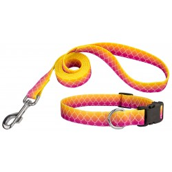 Fabulous Ombre Deluxe Dog Collar & Leash